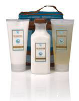 Aromatherapy Spa products available from the aloe vera online store: Relaxation Bath Salts, Relaxation Shower Gel and Relaxation Massage Lotion. Supplier of Forever Living Aloe Vera Products in Florida